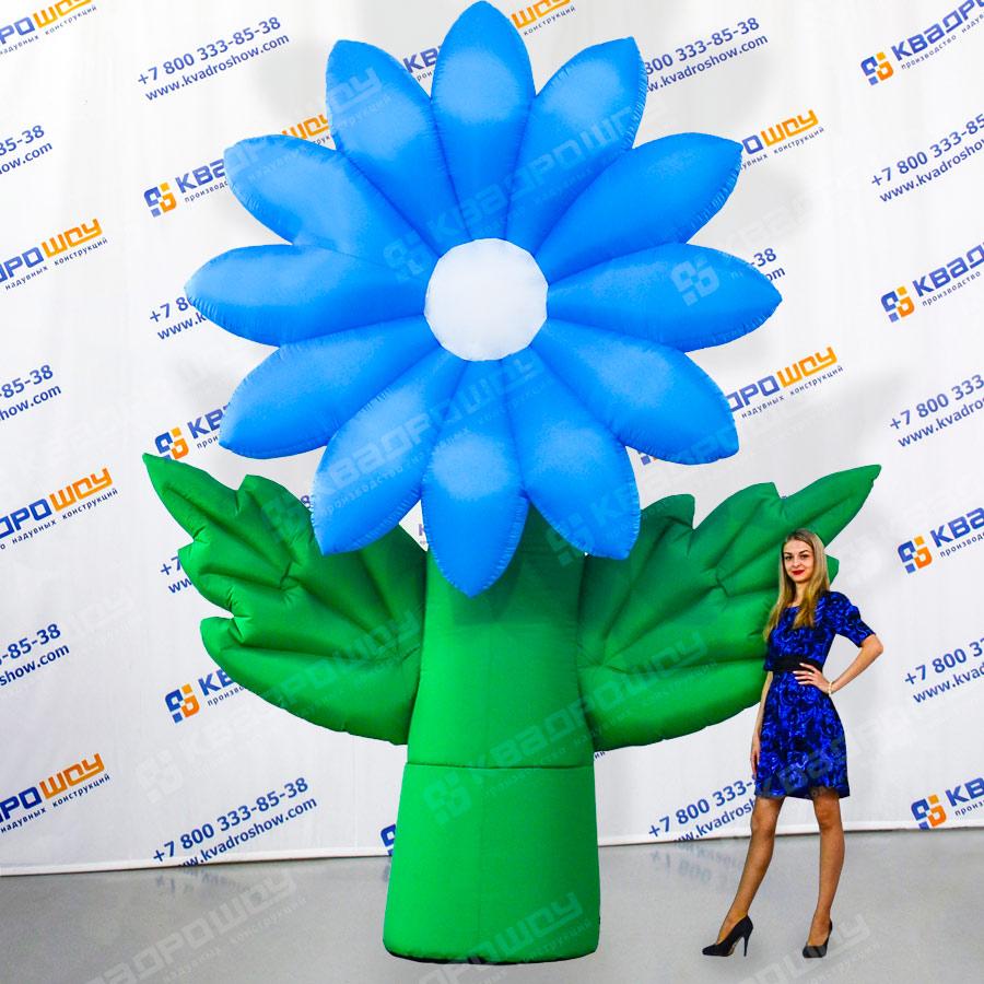 Надувной цветок Хризантема голубая