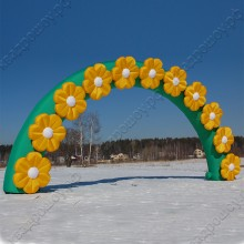 Пневмокаркасное сооружение арка