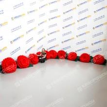 Надувная гирлянда из красных гвоздик