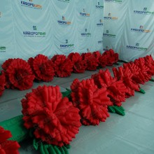 Декорации цветы