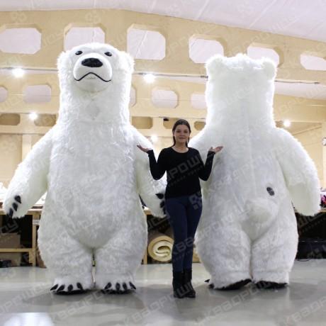 Белый медведь, вид сзади и спереди