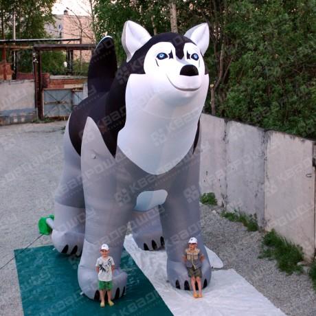 Геостат - большая собака Хаски
