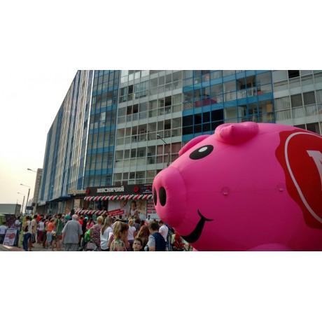 Пневмоконструкция свиньи