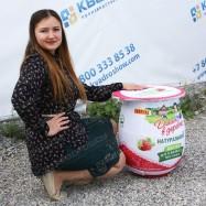 Большие джумби копии товара банка йогурта домик в деревне