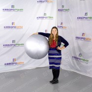 серебряный шар