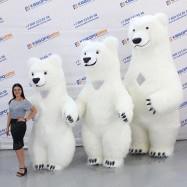 белые медведи надувные костюмы