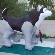 надувная собака