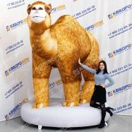Надувная фигура Верблюд