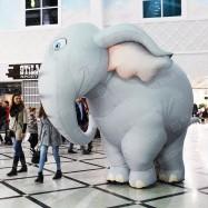 Костюм для промоутера Слон