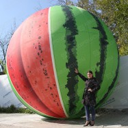 Пневмофигура большой арбуз