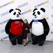 Надувные костюмы мишек Панды