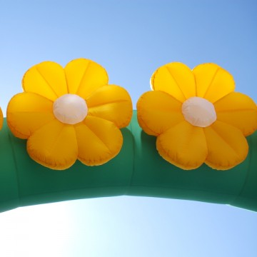 Пневмоарка с цветами