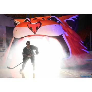 Хоккейная арка Рысь Северсталь