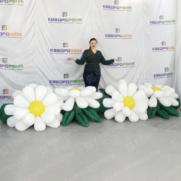 надувная пневмогирлянда из 4 белых цветов календула