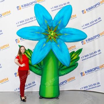 Надувной огромный цветок лилия голубая