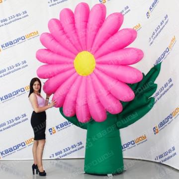 Фигура надувная Ромашка розовая
