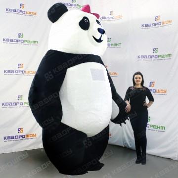 ростовая кукла мишка панда с бантиком для промоутеров