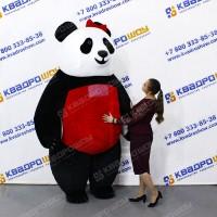 Пневмокостюм медведь Тедди