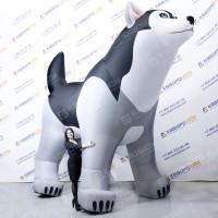 Надувная собака Хаски
